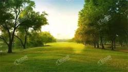 林达·阳光新城 | 与绿意相伴,聆听万物共生的音律