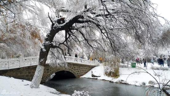 恒大翡翠华庭:下雪的日子,最想家……130.png