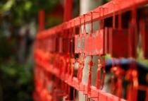 碧桂园·东城首府祈福大会即将开启
