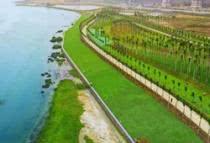 冯家江同片区地块先后挂牌出让 片区规划建设红树林金融科技小镇项目