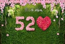 万朵玫瑰全城派送,520仁信·半岛城对你深情告白!