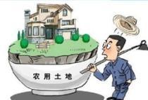 土地管理法二审改动