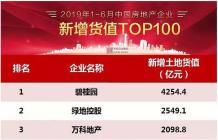 2019年上半年中国房地产企业新增货值TOP100