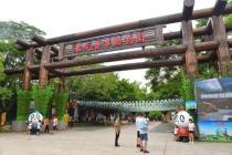 东莞游玩攻略之寮步篇——动物园和古村落了解一下