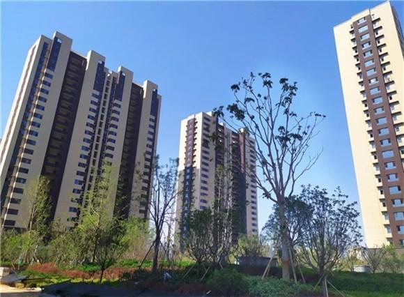 大业锦绣阳光城:据说,一座城市中,有99%的人假装在生活?