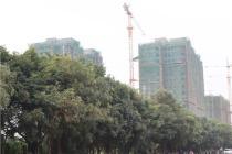 《广西乡村振兴战略规划》日前印发实施