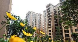@东莞房东、租户 从9月1日起房屋租金不能随意上涨了!