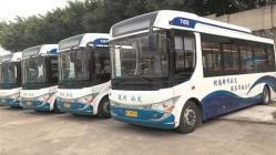 泉州11条环湾公交线路151辆公交车 纯电动公交车全覆盖