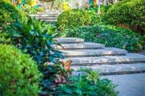 当代万国城MOMΛ:约7万㎡全龄互动园林 纵享四季运动人生
