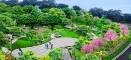 """3万平方米!东莞这个公园将以新的""""颜值""""喜迎国庆节"""