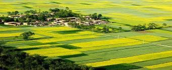 农村房屋土地使用权证的办理流程及丢失补办流程
