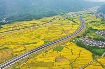 最新!腾陇高速预计2020年6月建成通车!