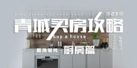 青城买房攻略第二十三期:(新房装修:厨房篇)