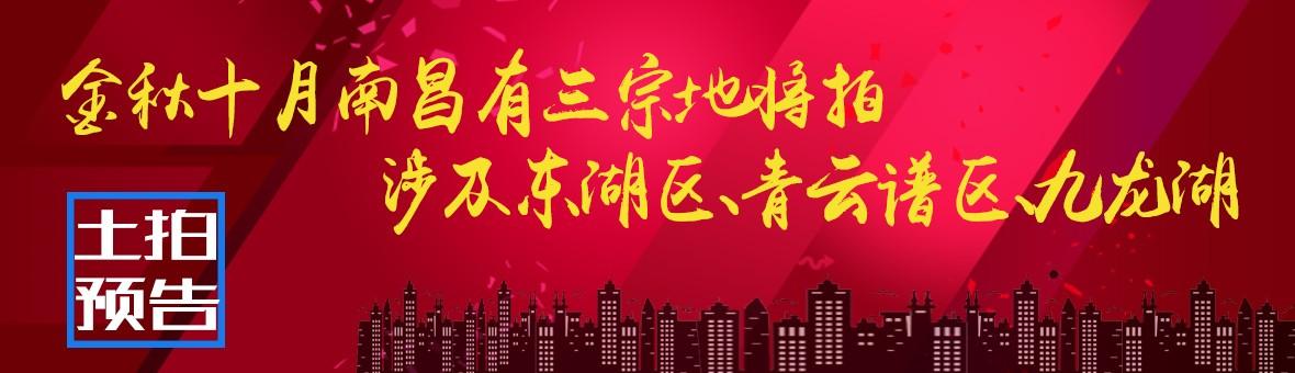 10月18日南昌将有三宗地拍卖,涉及东湖区、青云谱区、九龙湖
