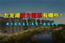 九龙湖新力园系有哪些?新力四大园系坐镇九龙湖