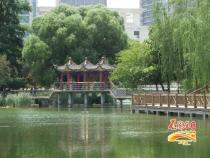 石家庄:永久性绿地严禁擅自改变范围和用途