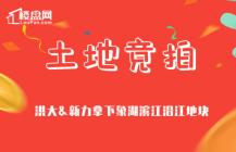【楼盘网早报2019.11.09】洪大&新力拿下象湖滨江沿江地块