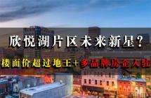 欣悦湖片区未来新星?楼面价超过地王+多品牌房企入驻