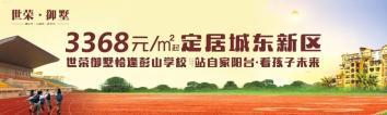 阳新房产:醉美城东新区!!!繁华之上·一城仰望