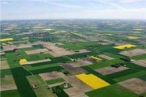 划拨土地的房子是什么种类的 它值得购买吗?