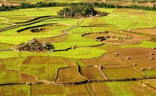 济南发布自由贸易区济南片区规划和用地管理的指导意见