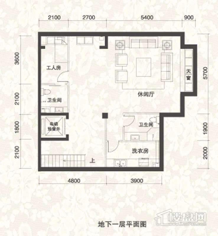 双拼别墅B1户型地下一层户型图