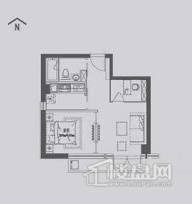 丽晶馆标准层B2户型1室1厅1卫