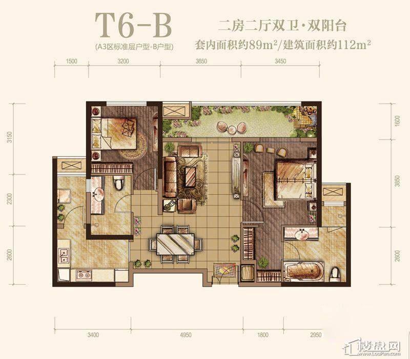 T6-B型图