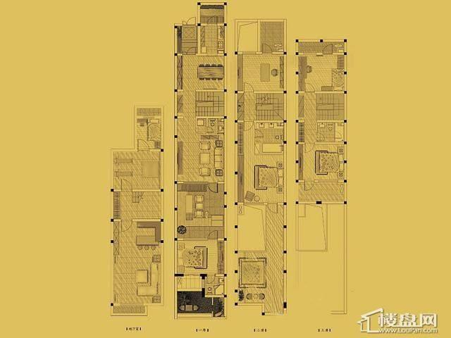 联排A户型5室5厅4卫 186.50㎡
