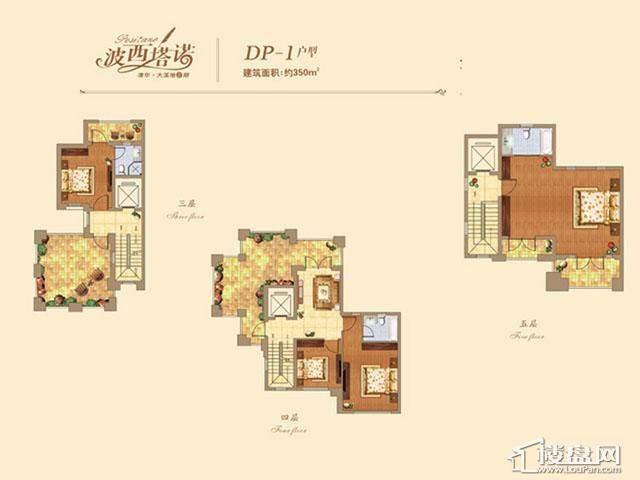 DP-1(2)户型图