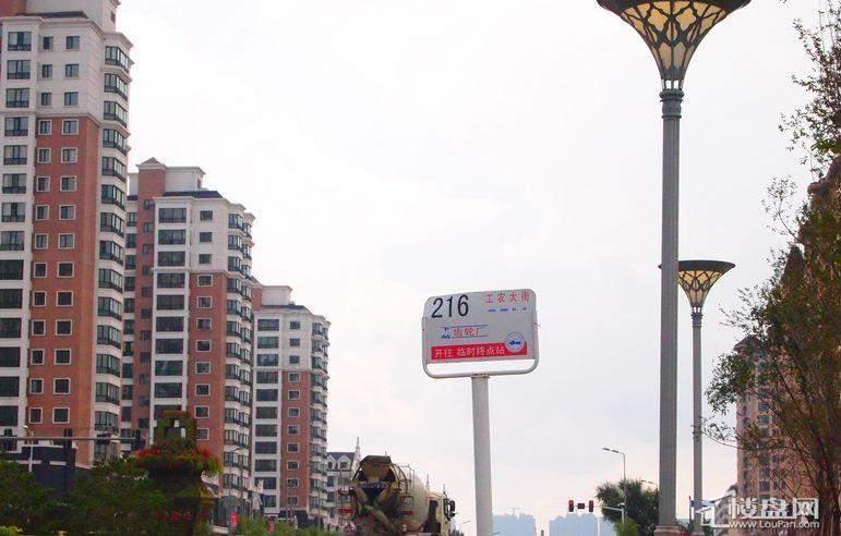 海富锦园周边公交站牌