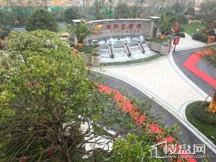 浏阳碧桂园实景图
