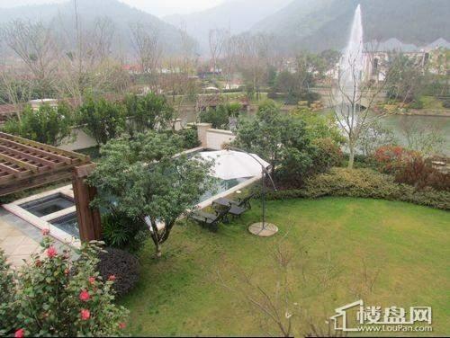 香溪玫瑰园实景图