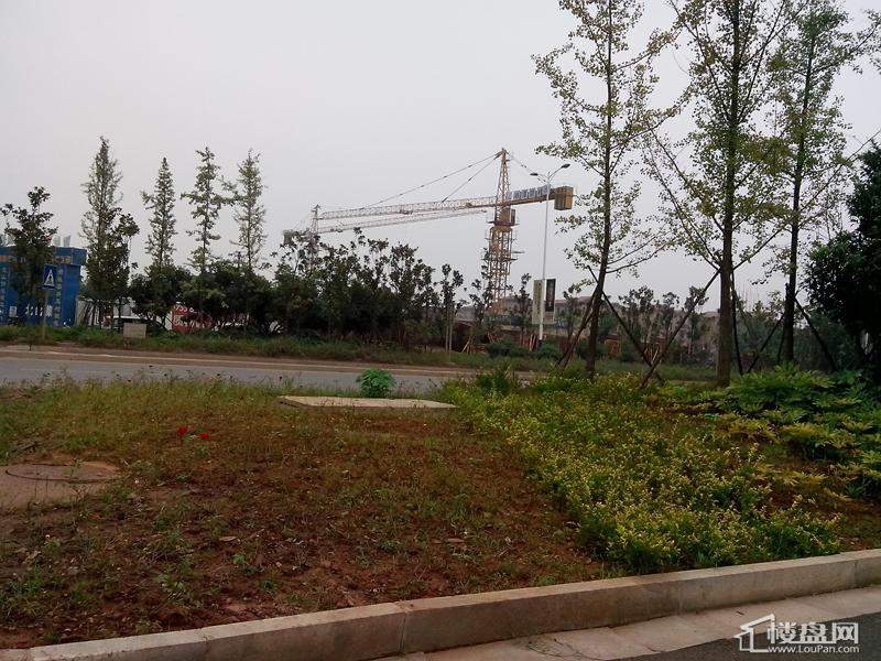 湘潭碧桂园实景图