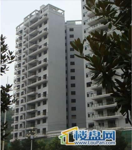 华颐蓝天东南面实景图(2010.8)