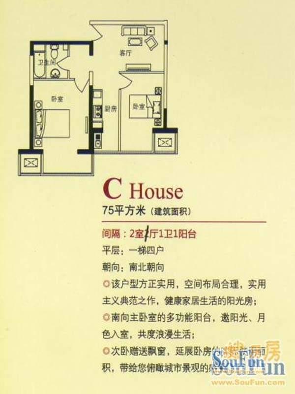 天琴大厦标准层C户型