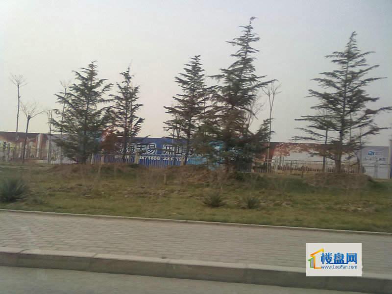 渤海天易园实景图