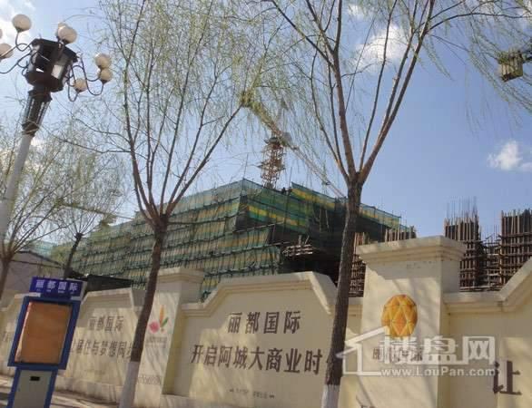 丽都国际项目施工进度图(2012-04-26)