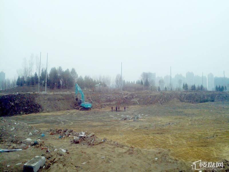 金安向日葵地基建设(2012-3-30)