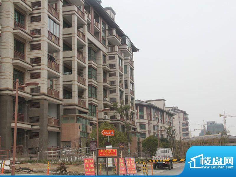 颐景苑皇都漫城实景图2012-03-08