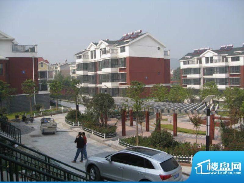 宜家庭院中心景观(2011-11-2)