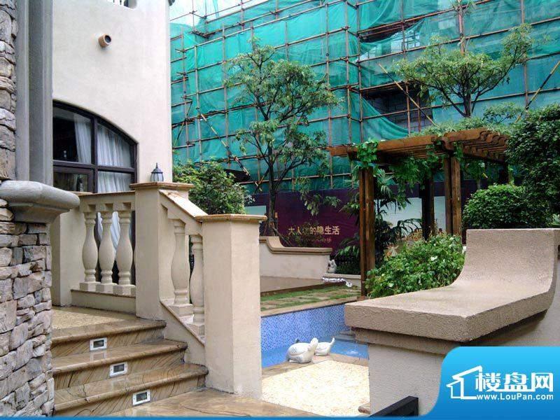 朗润园实景图(2010-08-30)