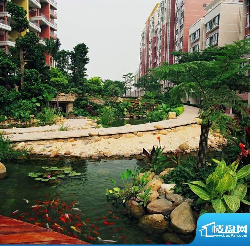 帝璟东方小区实景(2012-5-5)