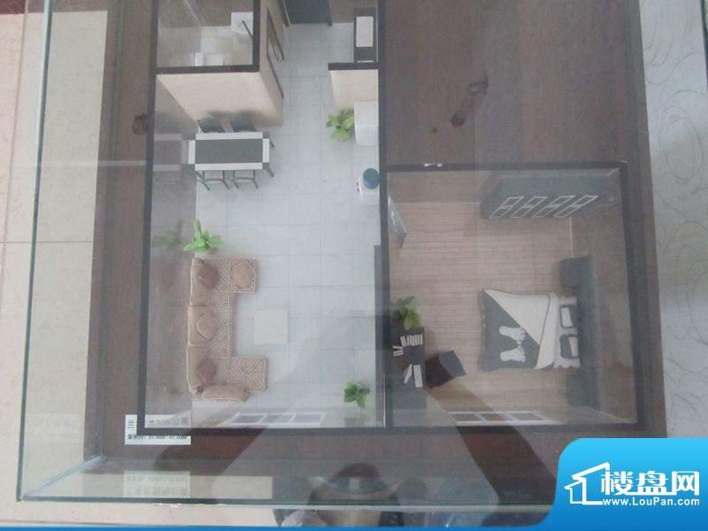 兰花花国际公寓户型面积:55.00m平米