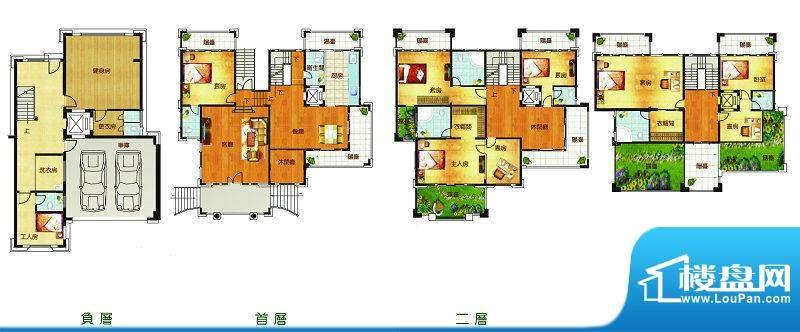 聚豪园A户型 11室4厅面积:806.86m平米