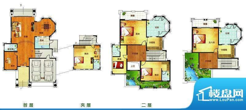 聚豪园B户型 5室3厅面积:504.49m平米