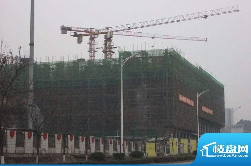 东山康城实景图20120229 (17)