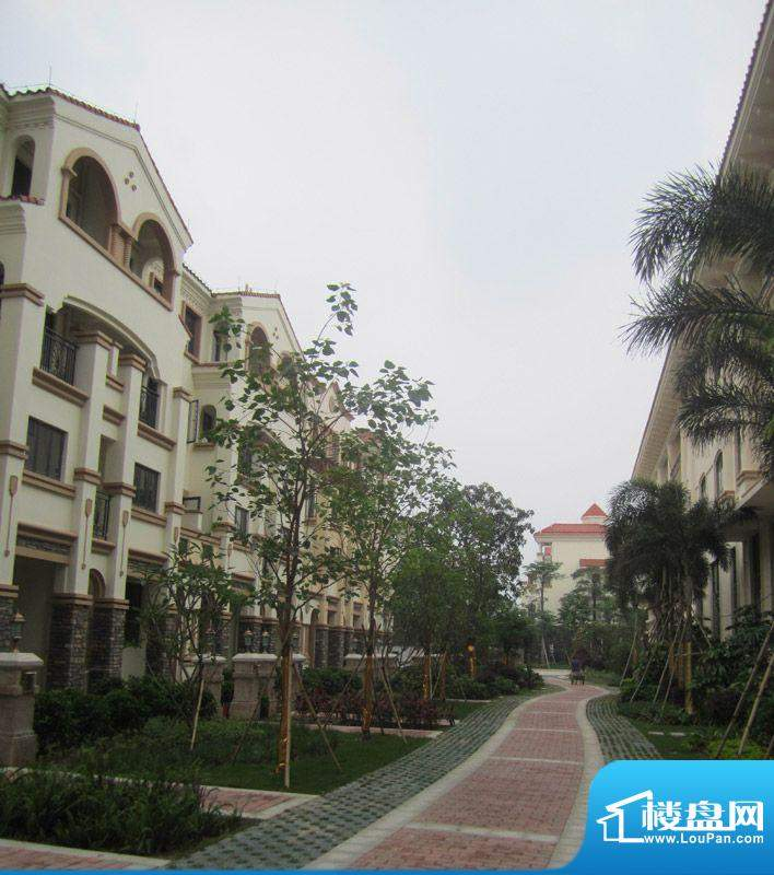 桂丹颐景园实景图