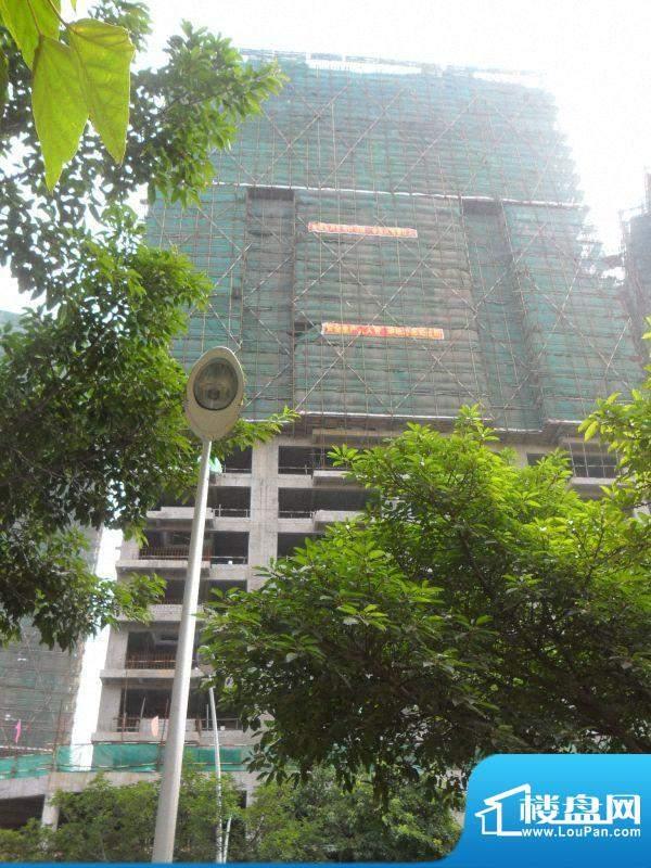 公园壹号工程进度(20110719)