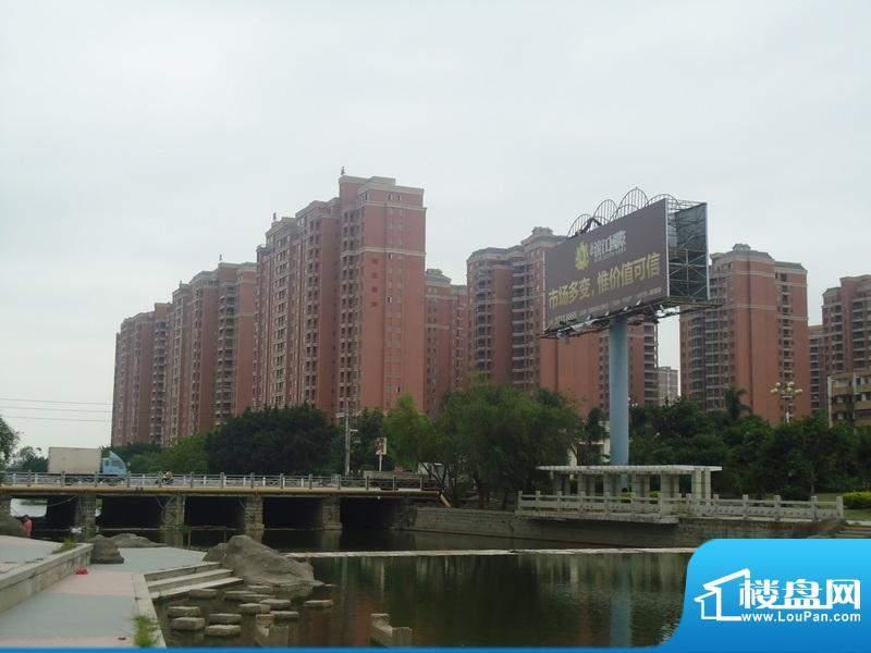 滨江国际实景图